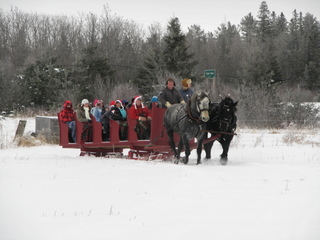 Sleigh rides in Winter for family