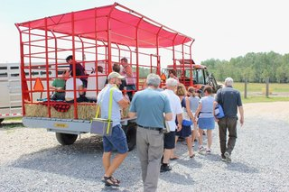 Groups of up to 35 people can fit on our sturdy wagon