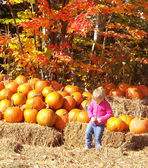 Young girl resting in the pumpkin patch ...